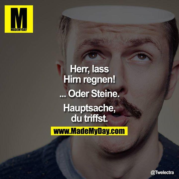 Herr Lass Hirn Regnen