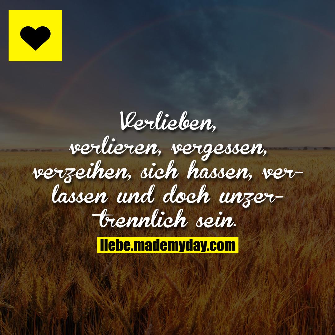 Verlieben, verlieren, vergessen, verzeihen, sich