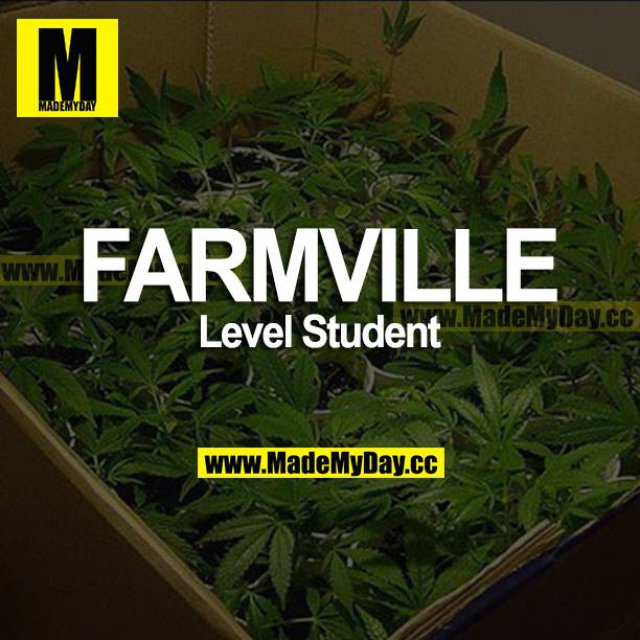 FARMVILLE<br /> Level Student