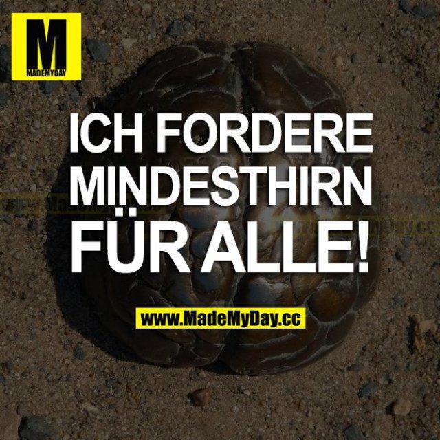 ICH FORDERE MINDESTHIRN FÜR ALLE!