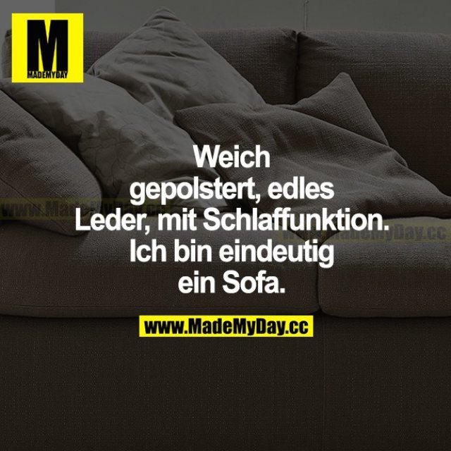 Weich gepolstert, edles Leder, mit Schlaffunktion. Ich bin eindeutig ein Sofa.