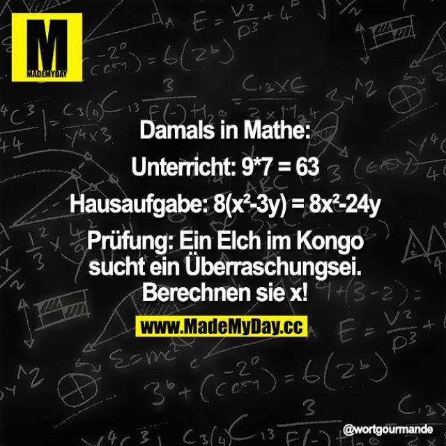 Damals in Mathe:<br /> Unterricht: 9*7=63<br /> Hausaufgabe: 8(x2-3y)=8x2--24y<br /> Prüfung: Ein Elch im Kongo sucht ein Überraschungsei. Berechnen sie x!