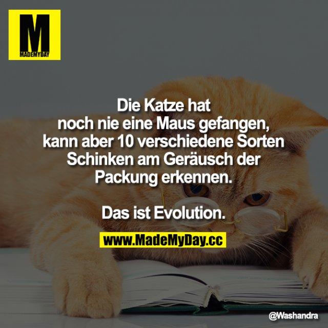 Die Katze hat noch nie eine Maus gefangen, kann aber 10 verschiedene Sorten Schinken am Geräusch der Packung erkennen.<br /> <br /> Das ist Evolution.