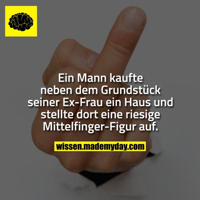 Frau fingert mann