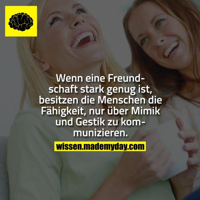 Wenn eine Freundschaft stark genug ist, besitzen die Menschen die Fähigkeit, nur über Mimik und Gestik zu kommunizieren.
