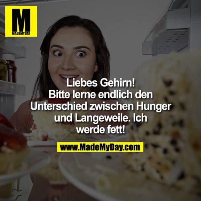 Liebes Gehirn!<br /> Bitte lerne endlich den Unterschied zwischen Hunger und Langeweile.<br /> Ich werde fett!