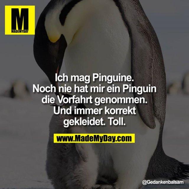 Ich mag Pinguine. Noch nie hat mir ein Pinguin die Vorfahrt genommen. Und immer korrekt gekleidet. Toll.