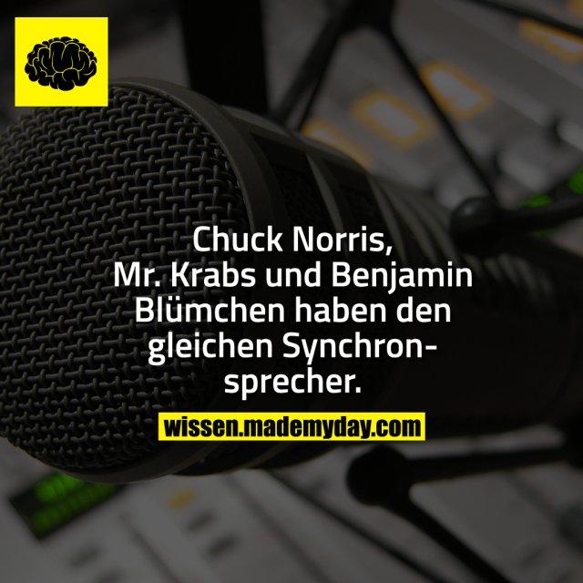 Chuck Norris, Mr. Krabs und Benjamin Blümchen haben den gleichen Synchronsprecher.