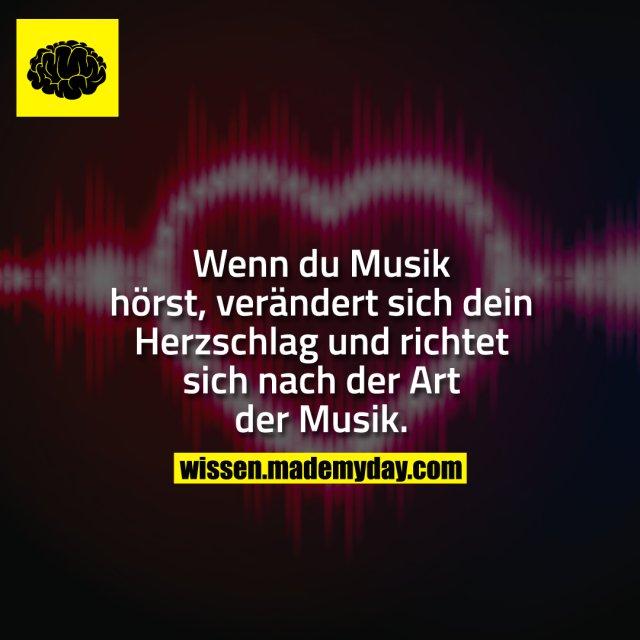 Wenn du Musik hörst, verändert sich dein Herzschlag und richtet sich nach der Art der Musik.
