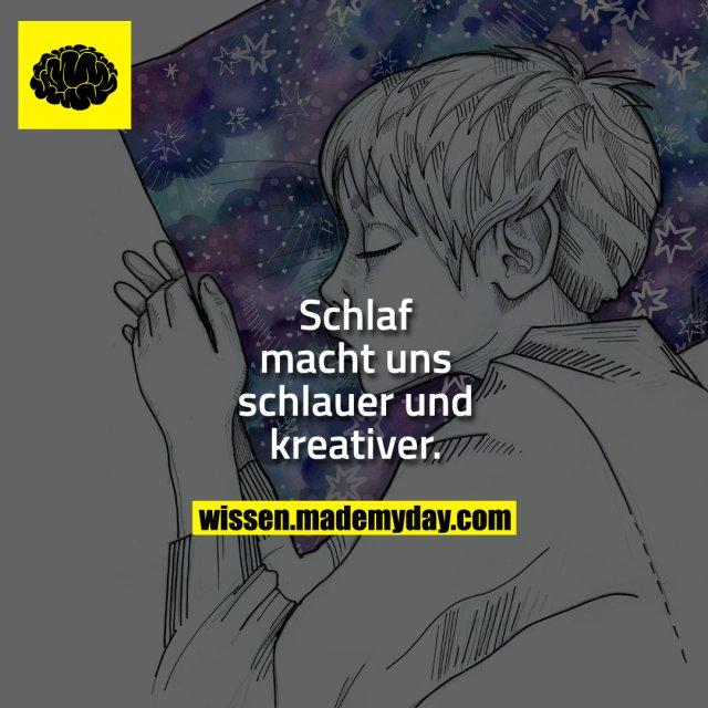 Schlaf macht uns schlauer und kreativer.