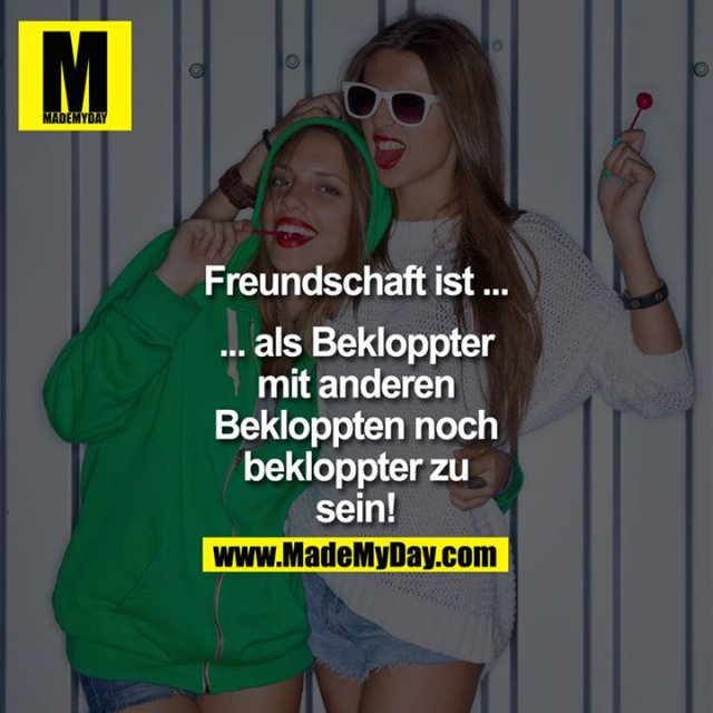 Freundschaft ist ...<br /> <br /> ... als Bekloppter<br /> mit anderen<br /> Bekloppten noch<br /> bekloppter zu<br /> sein!
