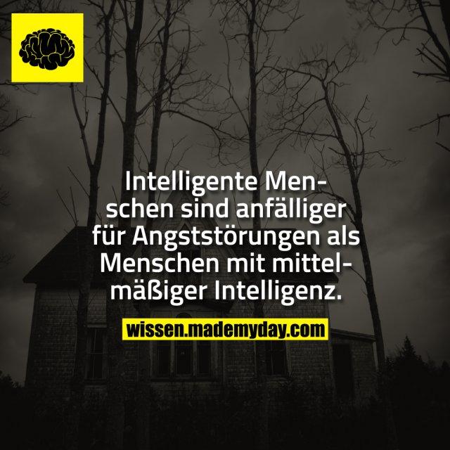 Intelligente Menschen sind anfälliger für Angststörungen als Menschen mit mittelmäßiger Intelligenz.