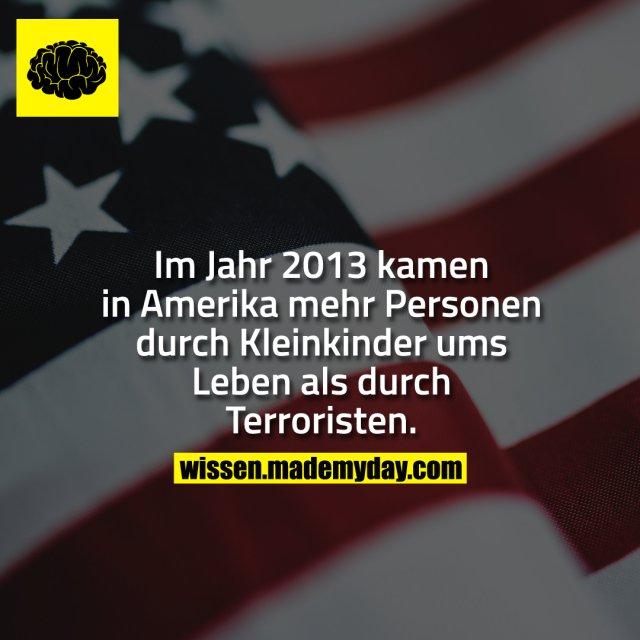 Im Jahr 2013 kamen in Amerika mehr Personen durch Kleinkinder ums Leben als durch Terroristen.
