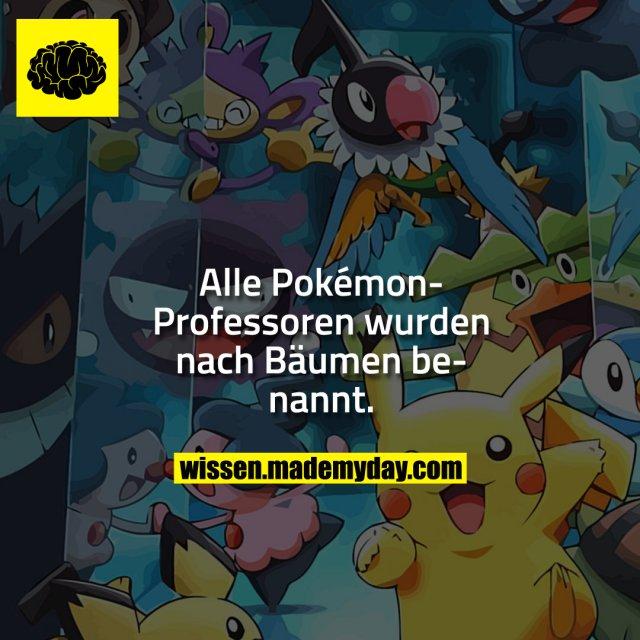 Alle Pokémon-Professoren wurden nach Bäumen benannt.