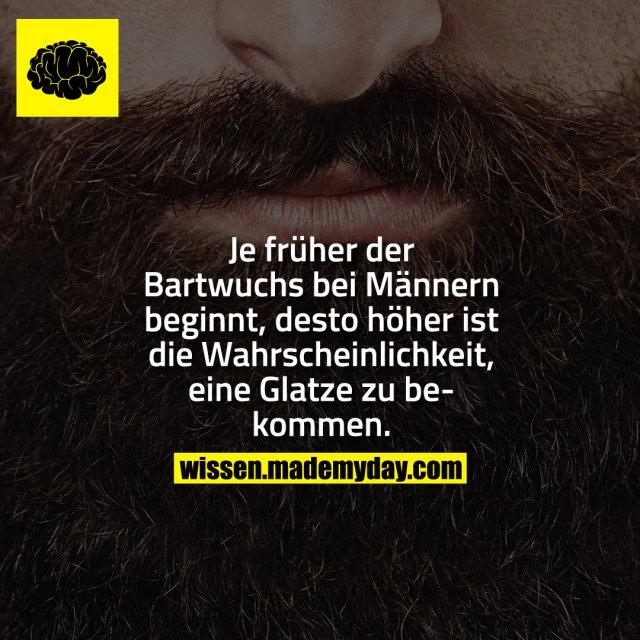 Je früher der Bartwuchs bei Männern beginnt, desto höher ist die Wahrscheinlichkeit, eine Glatze zu bekommen.