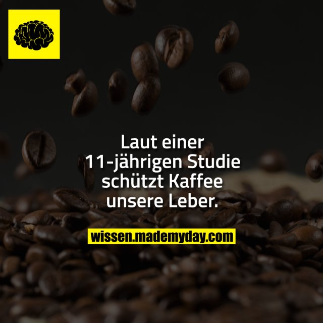 Laut einer 11-jährigen Studie schützt Kaffee unsere Leber.