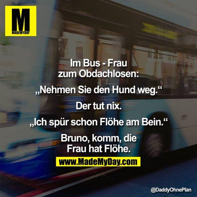 """Im Bus - Frau zum Obdachlosen:<br /> <br /> """"Nehmen Sie den Hund weg.""""<br /> <br /> Der tut nix.<br /> <br /> <br /> """"Ich spür schon Flöhe am Bein.""""<br /> <br /> Bruno, komm, die Frau hat Flöhe."""