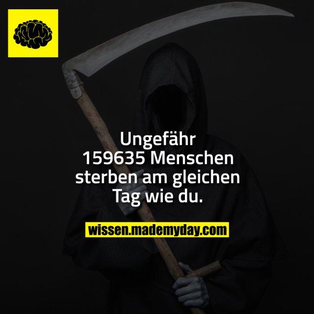 Ungefähr 159635 Mneschen sterben am gleichen Tag wie du.