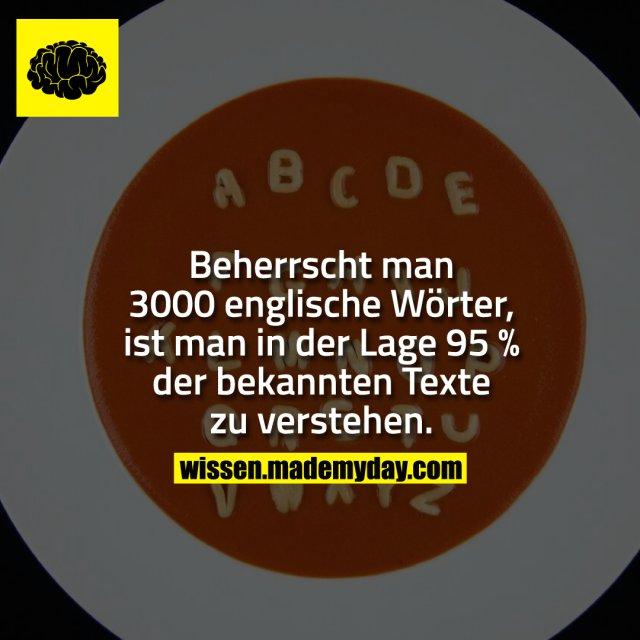 Beherrscht man 3000 englische Wörter, ist man in der Lage 95 % der bekannten Texte zu verstehen.