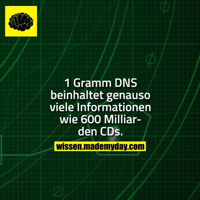 1 Gramm DNS beinhaltet genauso viele Informationen wie 600 Milliarden CDs.