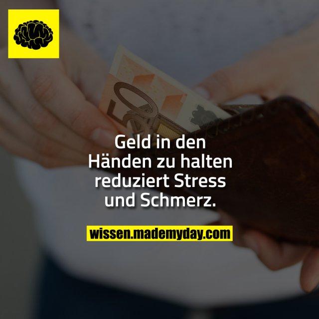 Geld in den Händen zu halten reduziert Stress und Schmerz.