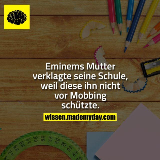 Eminems Mutter verklagte seine Schule, weil diese ihn nicht vor Mobbing schützte.