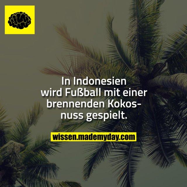 In Indonesien wird Fußball mit einer brennenden Kokosnuss gespielt.
