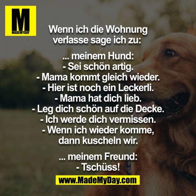 Wenn ich die Wohnung verlasse sage ich zu: <br /> <br /> …meinem Hund:<br /> -sei schön artig<br /> -Mama kommt gleich wieder<br /> -hier ist noch ein Leckerli<br /> -Mama hat dich lieb<br /> -leg dich schön auf die Decke<br /> -ich werde dich vermissen<br /> -wenn ich wieder komme, dann kuscheln wir<br /> <br /> …meinem Freund:<br /> -Tschüss<br />