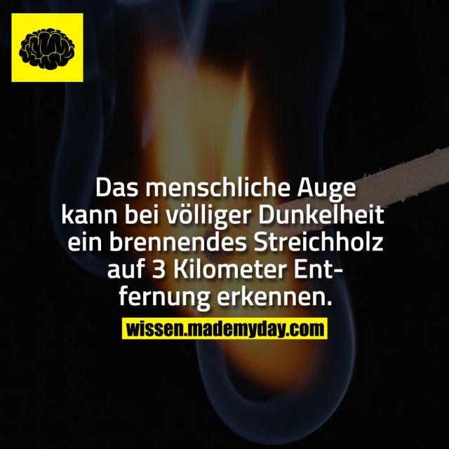 Das menschliche Auge kann bei völliger Dunkelheit ein brennendes Streichholz auf 3 Kilometer Entfernung erkennen.