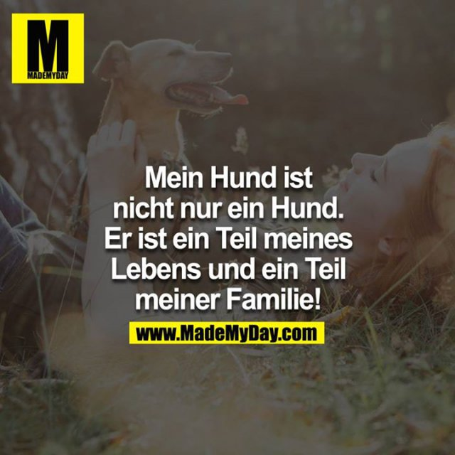 Mein Hund ist nicht nur ein Hund. Er ist ein Teil meines Lebens und ein Teil meiner Familie!