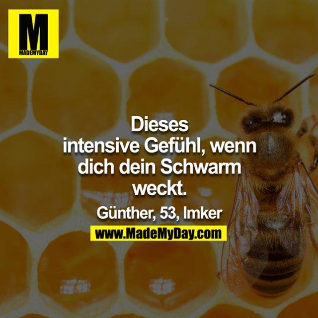 Dieses intensive Gefühl, wenn dich dein Schwarm weckt.<br /> <br /> Günther, 53, Imker<br />
