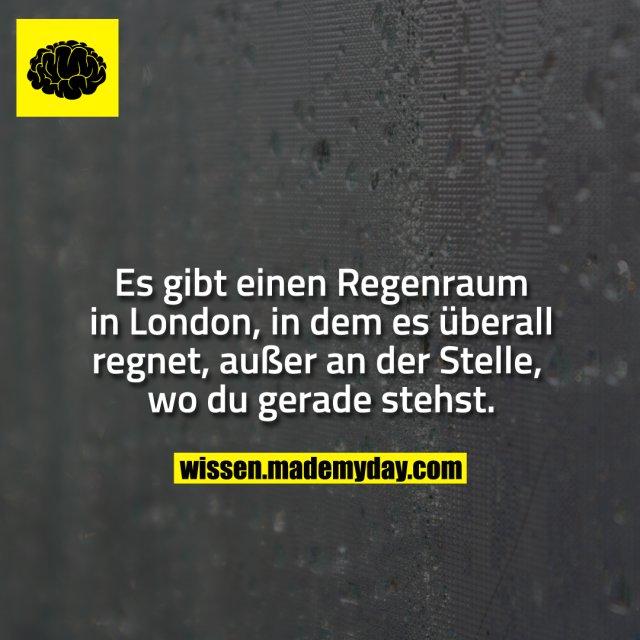 Es gibt einen Regenraum in London, in dem es überall regnet, außer an der Stelle, wo du gerade stehst.