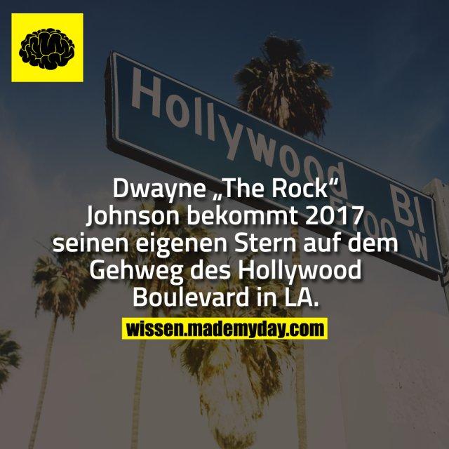 """Dwayne """"The Rock"""" Johnson bekommt 2017 seinen eigenen Stern auf dem Gehweg des Hollywood Boulevard in LA."""