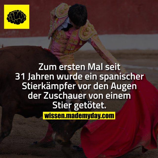Zum ersten Mal seit 31 Jahren wurde ein spanischer Stierkämpfer vor den Augen der Zuschauer von einem Stier getötet.