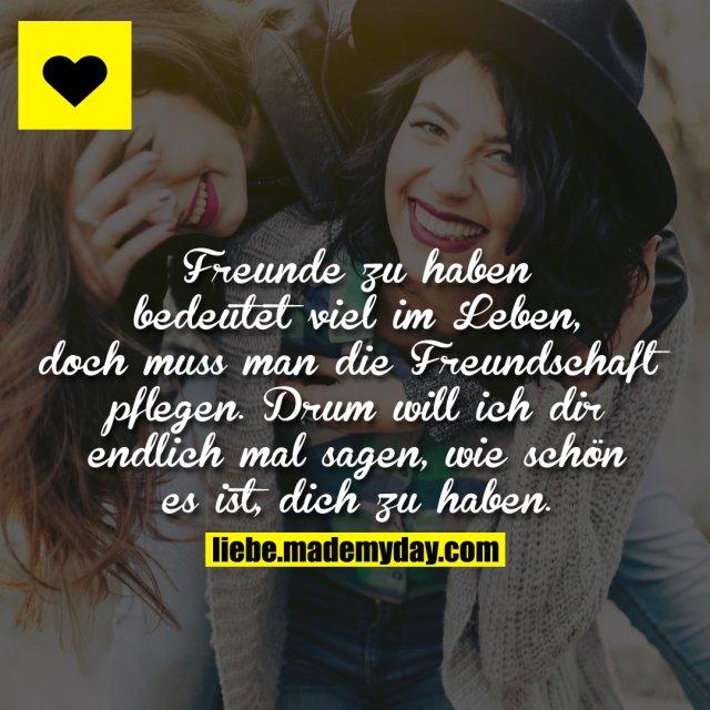 Freunde zu haben bedeutet viel im Leben, doch muss man die Freundschaft pflegen. <br /> Drum will ich dir endlich mal sagen, wie schön es ist, dich zu haben.