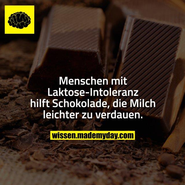 Menschen mit Laktose-Intoleranz hilft Schokolade, die Milch leichter zu verdauen.