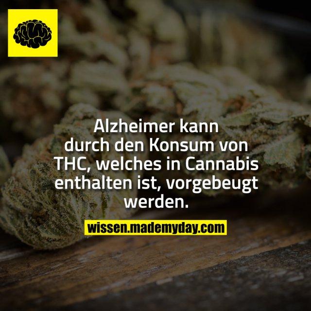 Alzheimer kann durch den Konsum von THC, welches in Cannabis enthalten ist, vorgebeugt werden.