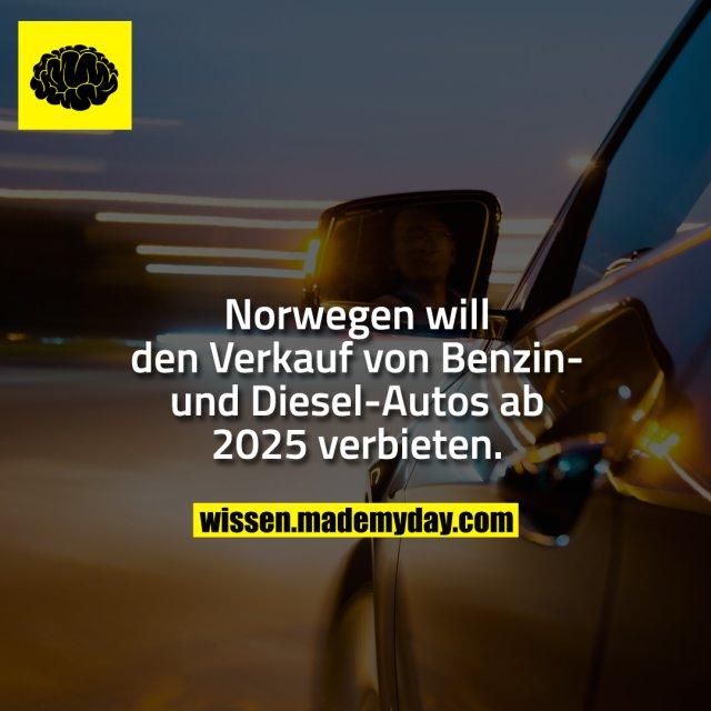 Norwegen will den Verkauf von Benzin- und Diesel-Autos ab 2025 verbieten.