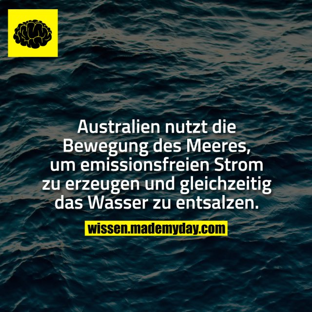 Australien nutzt die Bewegung des Meeres, um emissionsfreien Strom zu erzeugen und gleichzeitig das Wasser zu entsalzen.