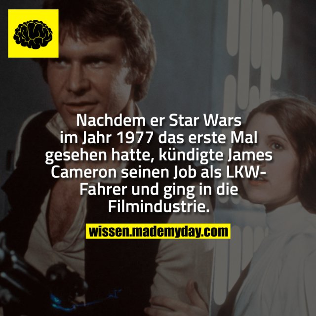Nachdem er Star Wars im Jahr 1977 das erste Mal gesehen hatte, kündigte James Cameron seinen Job als LKW-Fahrer und ging in die Filmindustrie.