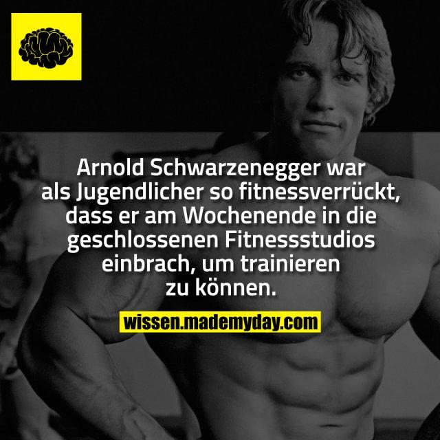 Arnold Schwarzenegger war als Jugendlicher so fitnessverrückt, dass er am Wochenende in die geschlossenen Fitnessstudios einbrach, um trainieren zu können.