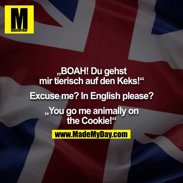 """""""BOAH! Du gehst mir tierisch auf den Keks!""""<br /> <br /> Excuse me? In English please?<br /> <br /> """"You go me animally on the Cookie!"""""""