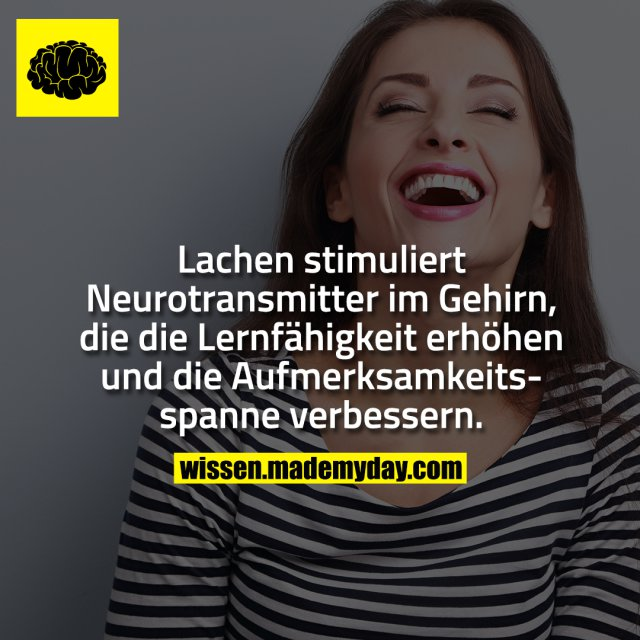Lachen stimuliert Neurotransmitter im Gehirn, die die Lernfähigkeit erhöhen und die Aufmerksamkeitsspanne verbessern.