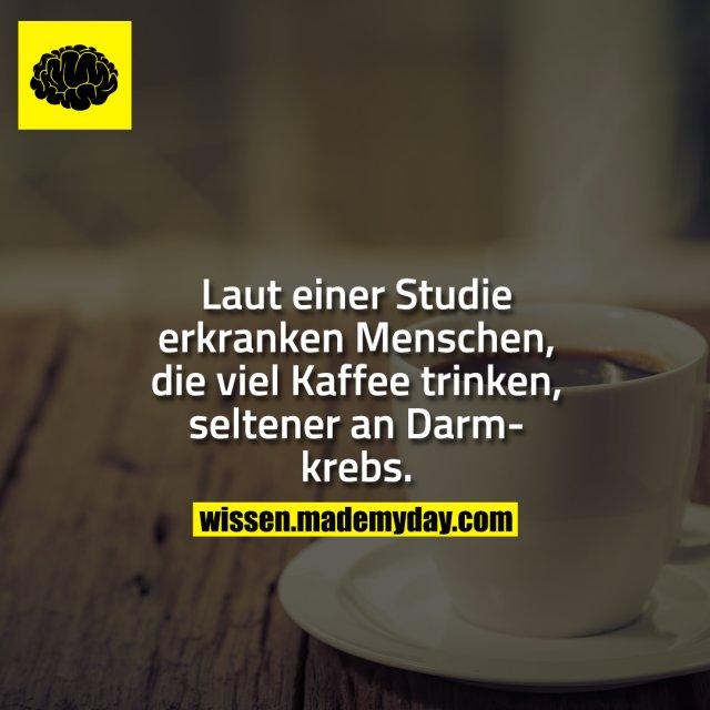 Laut einer Studie erkranken Menschen, die viel Kaffee trinken, seltener an Darmkrebs.