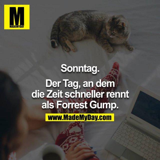 Sonntag.<br /> <br /> Der Tag, an dem die Zeit schneller rennt als Forrest Gump.