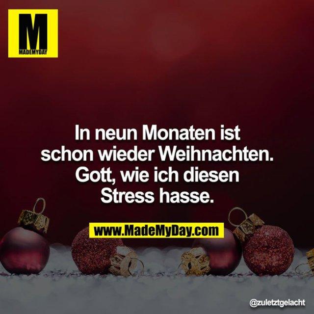 In neun Monaten ist schon wieder Weihnachten. Gott, wie ich diesen Stress hasse.