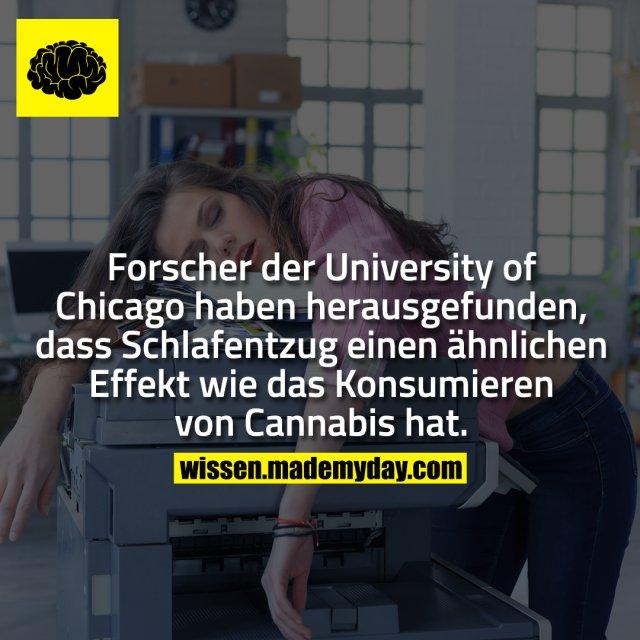 Forscher der University of Chicago haben herausgefunden, dass Schlafentzug einen ähnlichen Effekt wie das Konsumieren von Cannabis hat.
