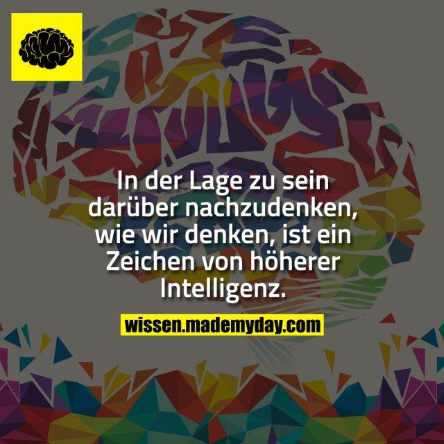 In der Lage zu sein darüber nachzudenken, wie wir denken, ist ein Zeichen von höherer Intelligenz.