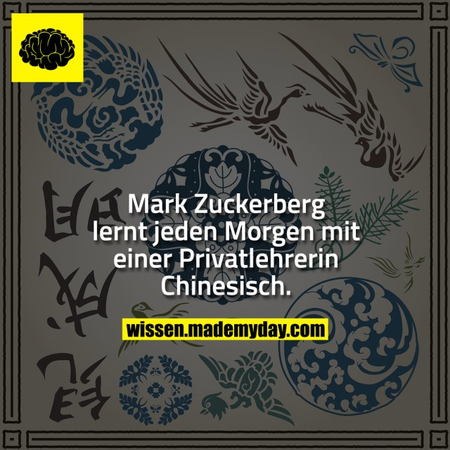 Mark Zuckerberg lernt jeden Morgen mit einer Privatlehrerin Chinesisch.