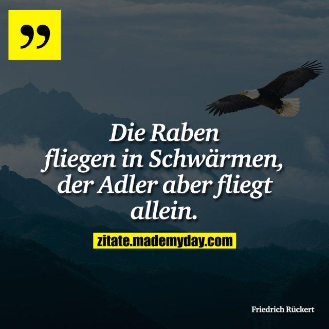 Die Raben fliegen in Schwärmen, der Adler aber fliegt allein.